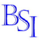 BSI Management Search & Consulting